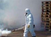 Servicio de fumigación en carabayllo, contactarse- lima