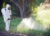 Oportunidad! fumigacion integral serfer eirl, lima