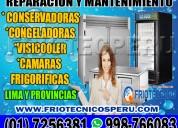 Surco- 7256381 mantenimiento preventivos (visicool