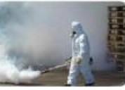 Fumigaciones insectos voladores  3373968 .