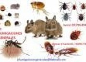Fumigaciones pulgas acaros  insectos 977678434