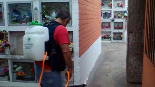 Protege Tu Hogar Libre De Insectos 977416582