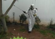 Dile adios a los insectos plagas 935684178