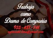 Agencia de damas de compaÑia/trabaja como dama