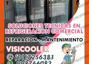 Profesional !servicio tecnico visicooler 017590161