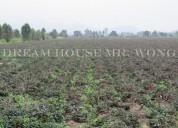 Chacra de cultivo de 10hec4,064m2 en huaral