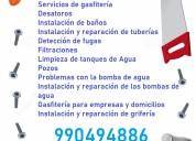 Merino 2342 lince servicios goyzueta
