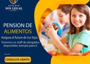 Abogados especialistas en pension de alimentos